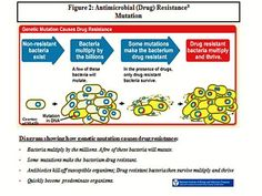 Antimicrobial Resistance: A 21st Century Public Health Threat