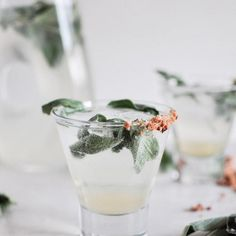 Gin Lime Rickey with Cilantro Cocktail - Low-Calorie Cocktails That Use Herbs - Shape Magazine