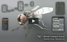 This is the first part of a tutorial about modeling a fly in Blender. The other parts of the tutorial will be added soon and will cover rigging, hair editing, shading…