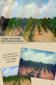 Image Essentials : Photoshop Actions — Photoshop ATN #old #photoshop actions • Available here → https://graphicriver.net/item/image-essentials-photoshop-actions/107745?ref=pxcr