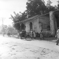 october 1958  port antonio, jamaica  streetlife