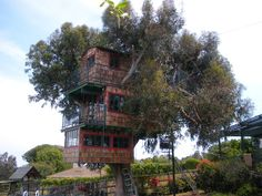 Pshhh totally gonna build this for my kids. Three story tree house with an ocean view. photo by Mihaela Wachsman