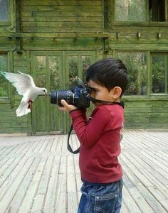 Amazing Photography Of A Kid vs. A Bird Amazing Photography, Art Photography, Cool Photos, Beautiful Pictures, Crazy Photos, Great Shots, Beautiful Children, Belle Photo, Cute Kids