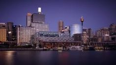 king st wharf from harbour - Google Search Seattle Skyline, New York Skyline, Willis Tower, King, Google Search, Building, Travel, Viajes, Buildings