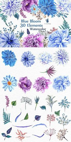 Watercolor Blue Flowers Clipart. Watercolor Flowers. $12.00