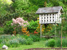 Birdhouse Anyone....