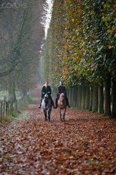 jada111:  fall ride. | English countryside