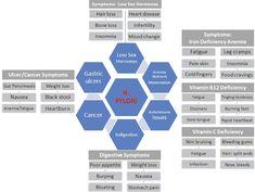hpylori-symptoms-chart Fascinating article on H Pylori News Health, Gut Health, Health And Nutrition, Health And Wellness, H Pylori Symptoms, Low Stomach Acid, Natural Health, Natural Cures, Health