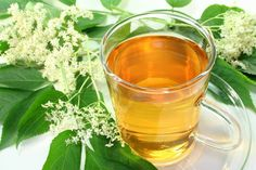 Elderflower tea is a soothing and healing beverage that contains strong anti-viral, anti-bacterial, and anti-inflammatory properties. Elderflowers are rich in vitamins A, C, and B-complex as well as numerous phytochemicals and antioxidant compounds. Elderflower tea is a powerful immune booster and is particularly helpful with respiratory ailments such as bronchitis, sinusitis, laryngitis, tonsillitis, asthma, chronic cough, sore throat, cold, flu, and fever. Elderflower is a natural…