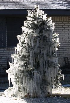 "take a ""used"" Christmas tree outside to make a frozen tree. put the hose on low at the top of the tree to create one of these. Winter Magic, Winter Snow, Winter Time, Winter Christmas, Frozen Christmas, Christmas Tree Outside, Ice Storm, I Love Snow, Winter Scenery"