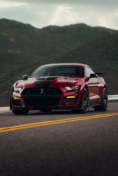 How does the 2020 Ford Mustang Shelby design-wise to its siblings? Head over to our link in bio as we examine the two. Ford Mustang Shelby Gt500, New Ford Mustang, Ford Shelby, Mustang Cars, Ford Gt, Ford Mustangs, 1957 Chevrolet, Chevrolet Corvette, Maserati