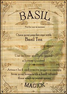 Open your psychic eye with Basil Tea. Magic Herbs, Herbal Magic, Herbal Oil, Magic Spells, Love Spells, Beauty Spells, Healing Spells, Wicca Witchcraft, Magick