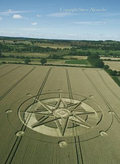 An eight-fold star. Eight is the number of both resonance and periodic renewal. Haselor, Warwickshire | 19th June 2015 | Wheat L