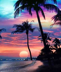 A beautiful sunset. Inspiration for art. Beautiful Nature Wallpaper, Beautiful Sunset, Beautiful Beaches, Beautiful Landscapes, Beautiful Scenery, Sunset Wallpaper, Tree Wallpaper, Pretty Wallpapers, Nature Pictures