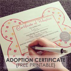 {Free Printables} Dog Adoption Certificates // WhenPoochComesToShove.com…