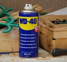 Always have a can of WD-40 on hand. It will keep the wasp, bugs and flies away.