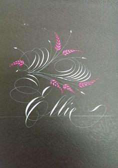 Jake Weidmann 39 S Gorgeous Master Penman Certificate