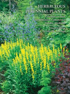 "The ""bible"" of perennial books; this is a must-have reference to the world of herbaceous perennial plants. Herbaceous Perennials, Perennial Plant, Natural Ecosystem, Downers Grove, University Of Georgia, New Edition, Garden Planning, Horticulture, Garden Inspiration"