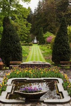 .#gardendesign #gardenideas