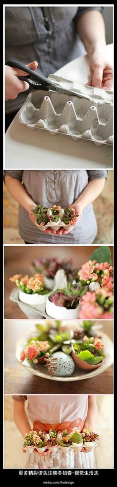 A beautiful way to recycle and made a spring centerpiece with some beautiful plants!