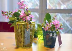 Urban Jungle Bloggers: Give a Friend a Plant by @designoutfit