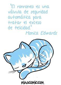 Seguro que de Todos Nuestros felinos Tienen Exceso de felicidad;-))))