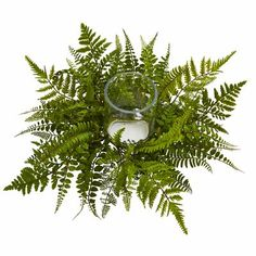 Loon Peak Imagine the flicker of candlelight through the dense green artificial ferns of this Mixed Fern Candelabrum. The ferns are spun expertly around the clear glass in a splendid display. It'll look great as a centerpiece for your living room table. Fern Wedding, Wedding Sand, Floral Wedding, Wedding Flowers, Wedding Table Centerpieces, Flower Centerpieces, Wedding Decorations, Centerpiece Ideas, Table Decorations
