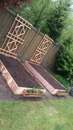 fall vegetable gardening zone 6 #vegetablegarden