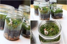 #DIY Terrariums for #EarthDay | Great craft idea for school, work or at home with the kids. #Bulbrite