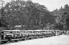 Caño Amarillo, parada de taxis 1930