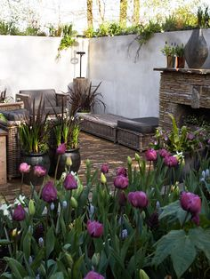 Fireplaces extend your time outdoors: You can move outside earlier in spring and stay there longer into fall. From fancy to rustic, portable to permanent, find a design to suit your home's architecture and your living style. Garden Bulbs, Planting Bulbs, Outdoor Fireplace Designs, Fireplace Ideas, Dutch Gardens, Narcissus Flower, Purple Tulips, Spring Bulbs, Tall Plants