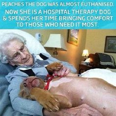 Peaches comforts those who need most.