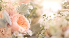 pretty pretty! Photo credit: Stillwater Cinematography { Husband + Wife Team! }