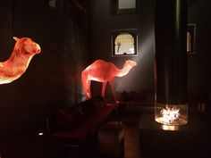 1001 Nacht im GAMS, Genießer- und Kuschelhotel Table Lamp, Home Decor, Time Out, Table Lamps, Decoration Home, Room Decor, Home Interior Design, Lamp Table, Home Decoration