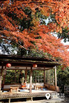 京都賞楓景點 神護寺 高雄茶屋 09