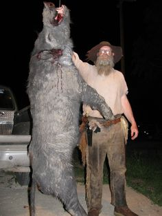 Bobcats Cant See For Looking Let Me Get By