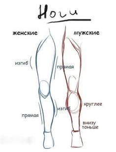 Как нарисовать ноги карандашом поэтапно?