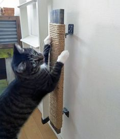 Cats love to scratch. But when your cat chooses to use your favorite furniture as a scratching post, it's not very relaxing for you! Diy Cat Tree, Pet Furniture, Furniture Design, Modular Furniture, Barbie Furniture, Plywood Furniture, Cheap Furniture, Garden Furniture, Cat Playground