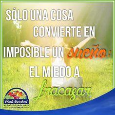 """""""Sólo una cosa convierte en imposible un sueño: el miedo a fracasar"""" #Frase #motivación"""