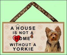 Love Yorkies!