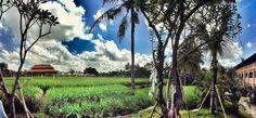Alaya Resorts, Ubud, Bali, Indonesia