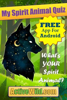 My Spirit Animal Quiz App. Discover your spirit animal with this free Android app. Learn about different spirit animals & share them on social media! Spirit Animal Quiz, Find Your Spirit Animal, Animal Facts For Kids, My Animal, Popular Social Media Apps, Quiz Me, Free Android, Friends Family, Animal Kingdom
