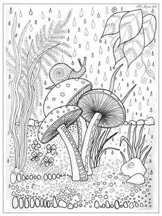 Mushroom and snail colouring page