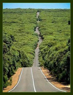 Australia East Coast Road Trip