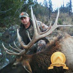 Arizona late season elk hunts