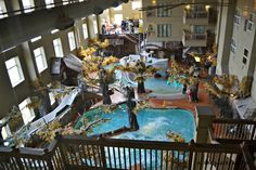 Crawdaddy Cove Indoor Water Park - Madison, WI - Kid friendly activity reviews - Trekaroo