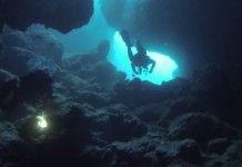 Top 5 des spots de plongée à Marseille et aux alentours Ville France, Parc National, Diorama, Whale, Sci Fi, Places, Top 5, Organiser, Spots