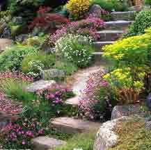 Steep slope landscaping.  This is what I need where I live.