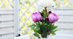 Kaunis kukkakimppu Plants, Plant, Planets
