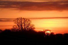 Delta Winter sunset